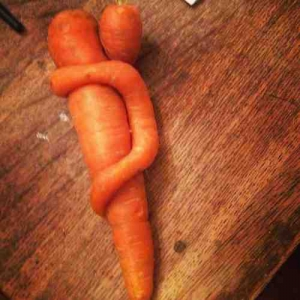 a-Carrot-Baby